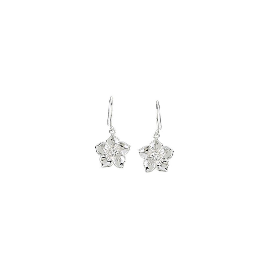 Diamond Fashion, Earrings, Diamond Earrings, Symbols/Nature, 14K White