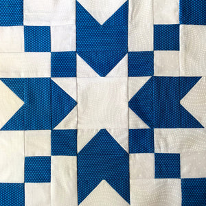 Good Cheer Quilt Block in Blue and White