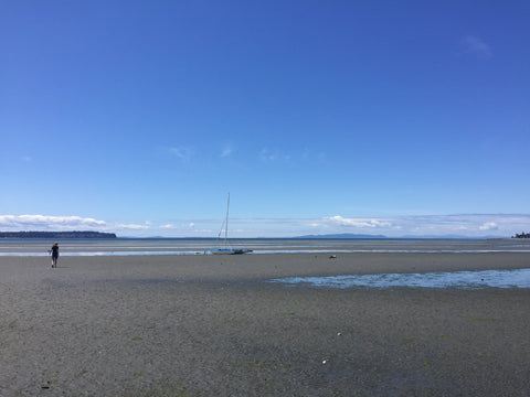 Ocean View in Birch Bay, Washington