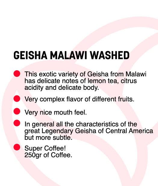 Geisha -Malawi Washed- Jar 250gr (Roasted Coffee)