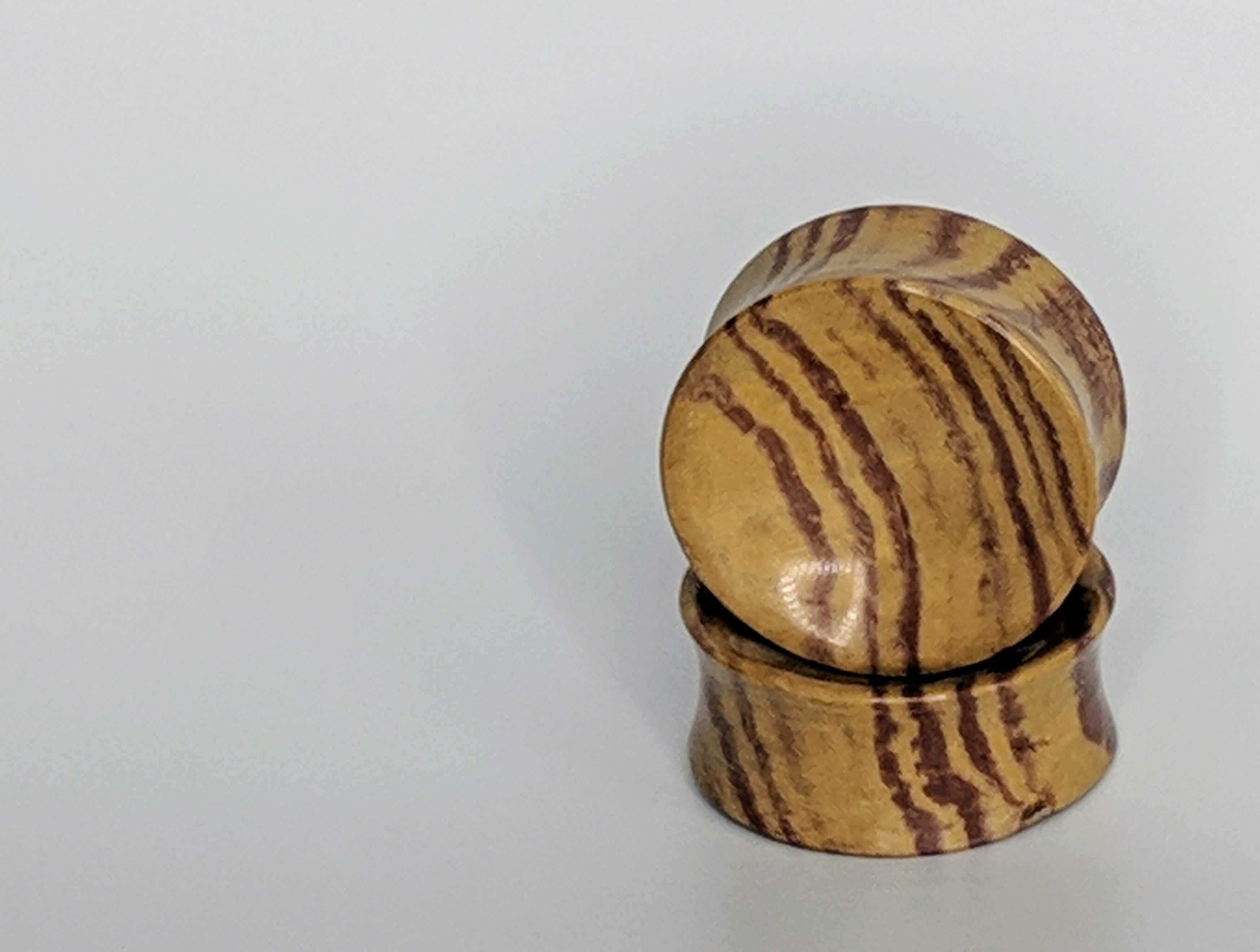 "1+1/2"" DF Concave Petrified Wood"
