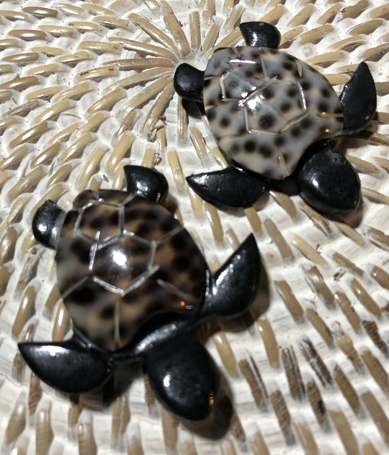 Turtle Wood and Shell Magnets