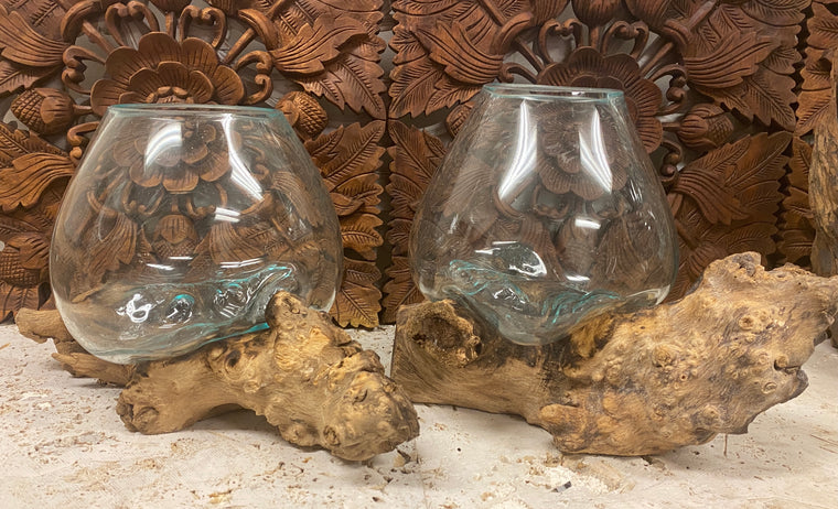 Hand blown Glass and Driftwood Terrarium or Fish Bowl- Medium