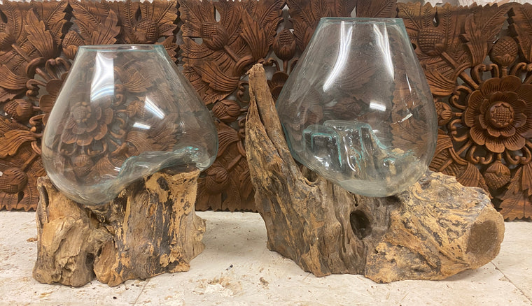 Hand blown Glass and Driftwood Terrarium or Fish Bowls