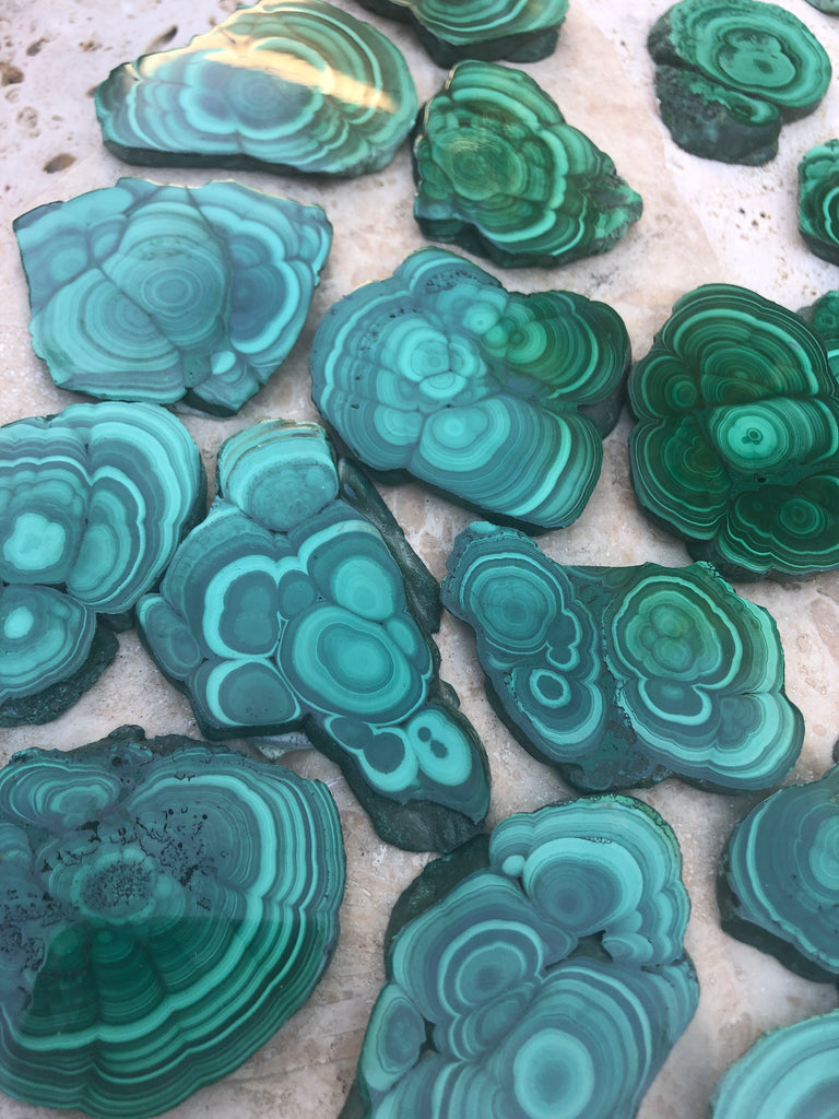 Malachite Flower  Slices from Rebublic of Congo, Africa