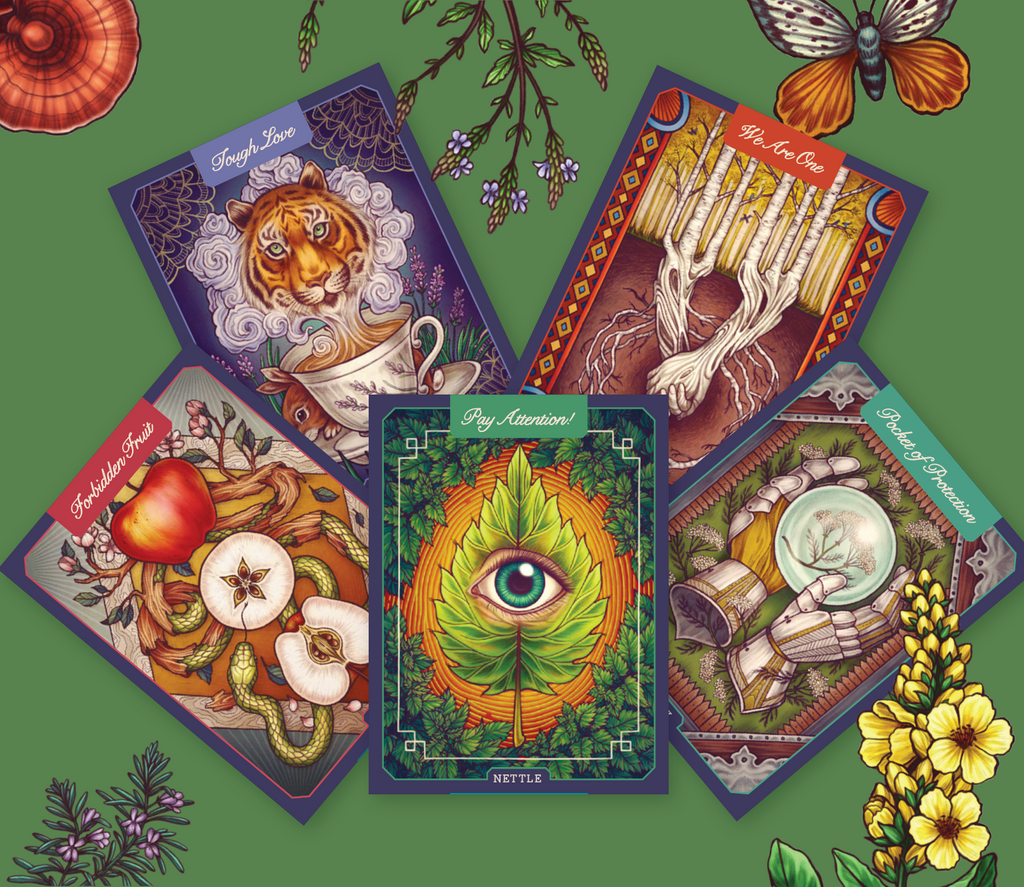 The Illustrated Herbiary - By Maia Toll with Card Set!