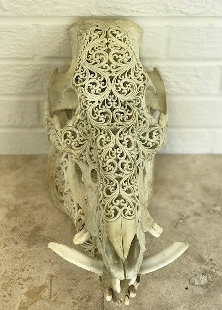Intricately Carved Wild Boar Skulls with Spirals