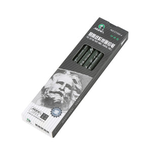 Marie's 12 Pieces Charcoal Drawing Pencil Set - Almost Artist