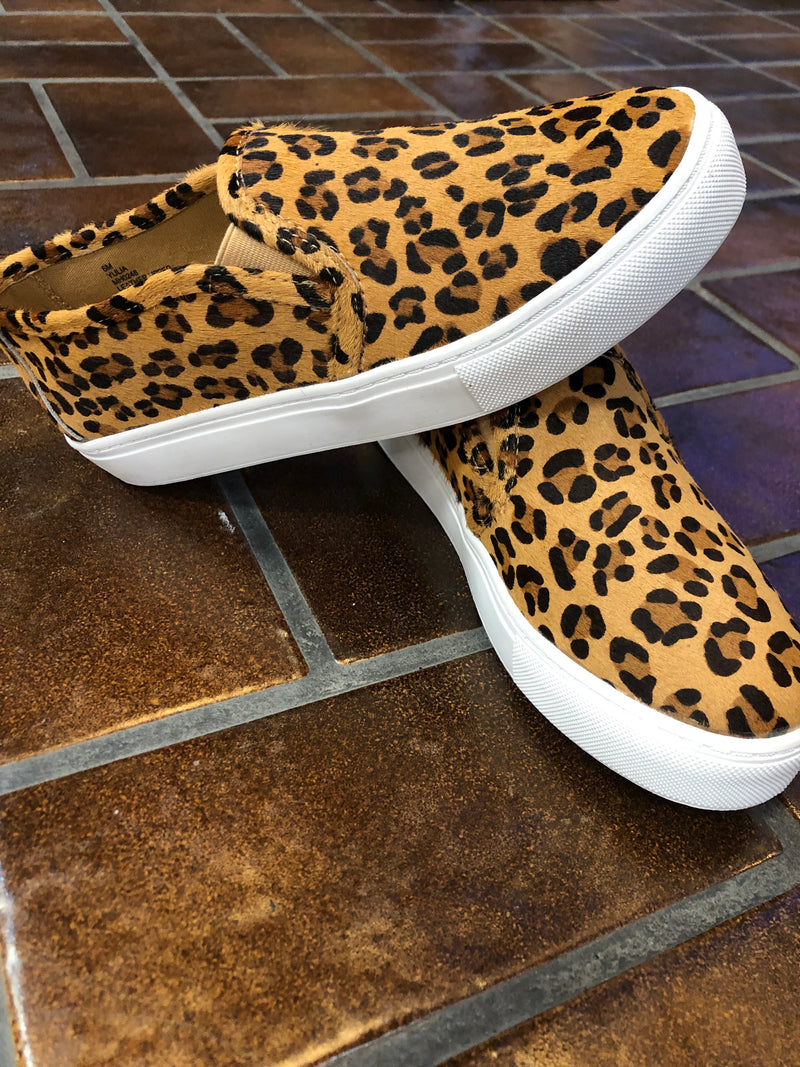 Leopard Canvas