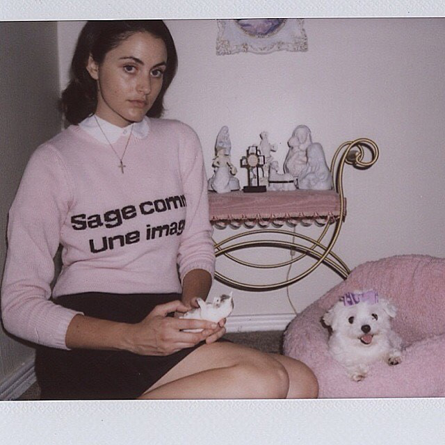 Sage come une image sweater