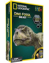 Dinosaur Dog Kit