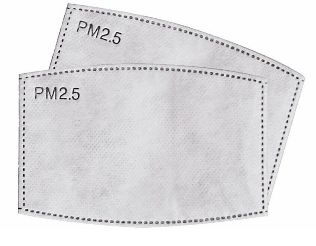 PM 2.5 Filters- Pack of 2