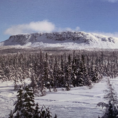 Photo from Mount Peyton snowmobile trip printed on canvas