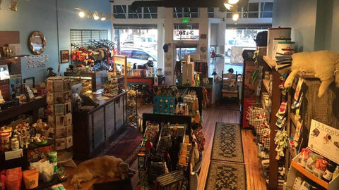 Inside a specialty pet supply store