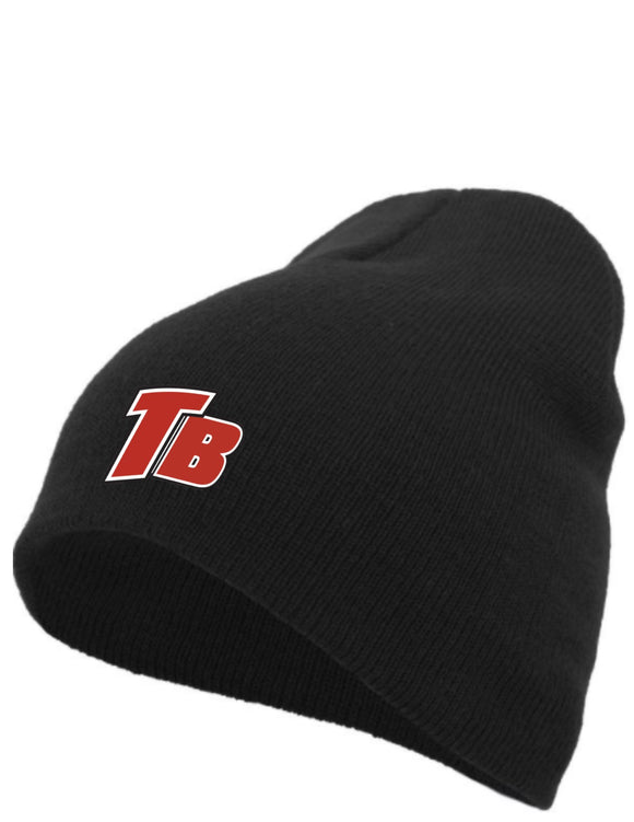 Basic Knit Beanie  (Total Travel Baseball)