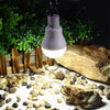 Solar Led Lights -