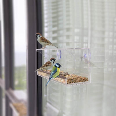 Window Bird Feeder -