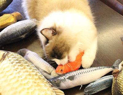 Lifelike Fish Toy for Cats -