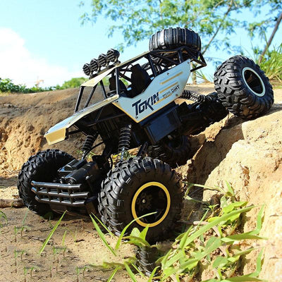 Off-Road Rock Terrain RC Cars -
