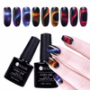 UV Gel Polish Lacquer Varnish Manicure -