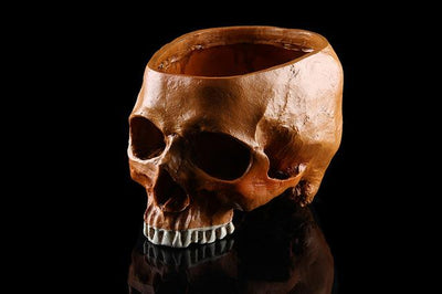 Skull Flower Pot - Yellow