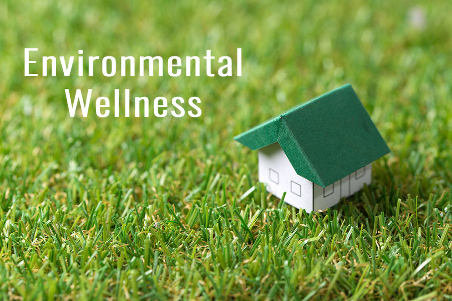 #2. Environmental Wellness: Living in harmony with the environment