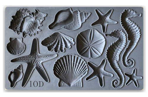 NEW SEA SHELLS 6 x 10 MOULDS