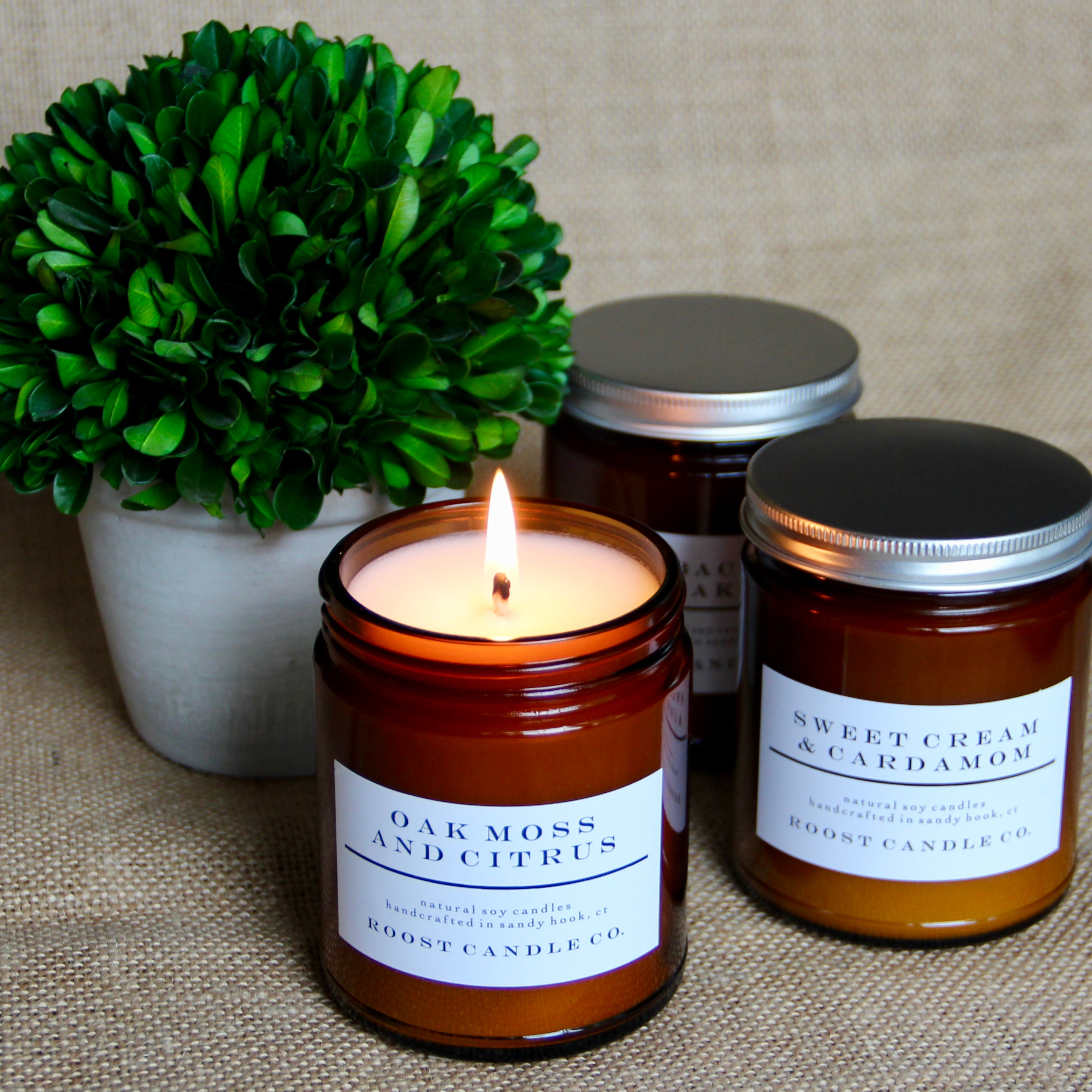 Oak Moss and Citrus <br> Apothecary Jar Candle