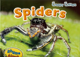 'Creepy Critters' Spider Book by Sian Smith & Spider Hand Puppet by Erin Devlin