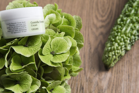Cosrx Centella Blemish Skin Cream - Beauty Seoul NZ