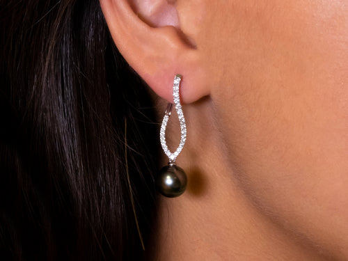 Tahitian Pearl and Diamond Earrings