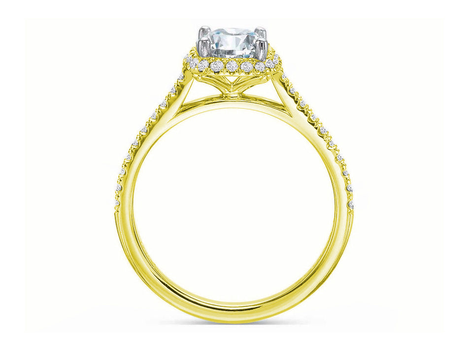 Yellow Gold, Platinum and Halo Diamond Engagement Ring at the Best Jewelry Store in Washington DC