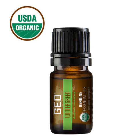 Wintergreen Organic Essential Oil - 5 ml