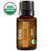 Clove Bud Organic Essential Oil - 15 ml