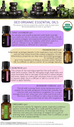 Spike Lavender Organic Essential Oil - 5 ml