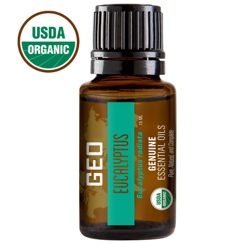 Eucalyptus Organic Essential Oil - 15 ml