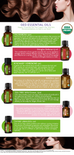 Shingles And Skin Defense Organic Essential Oil - 15 ml