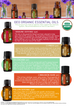 Cinnamon Bark Organic Essential Oil - 5 ml