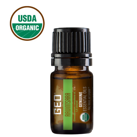 Ravintsara Organic Essential Oil - 5 ml