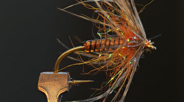 Fly Tie Tuesday - Soft Hackle March Brown 3/31/2020