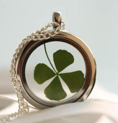 Dried Four Leaf Clover encased in a Glass Pendant