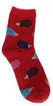 Hedgehog Socks - Red