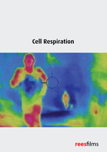 Cell Biochemistry Series: Cell Respiration
