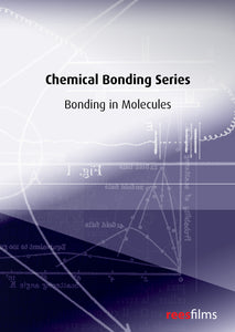 Chemical Bonding Series: Bonding in Molecules
