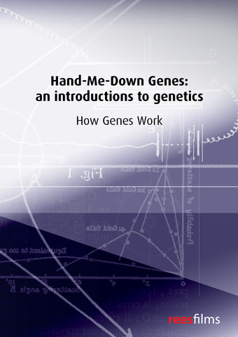Hand-Me-Down Genes Series: How Genes Work