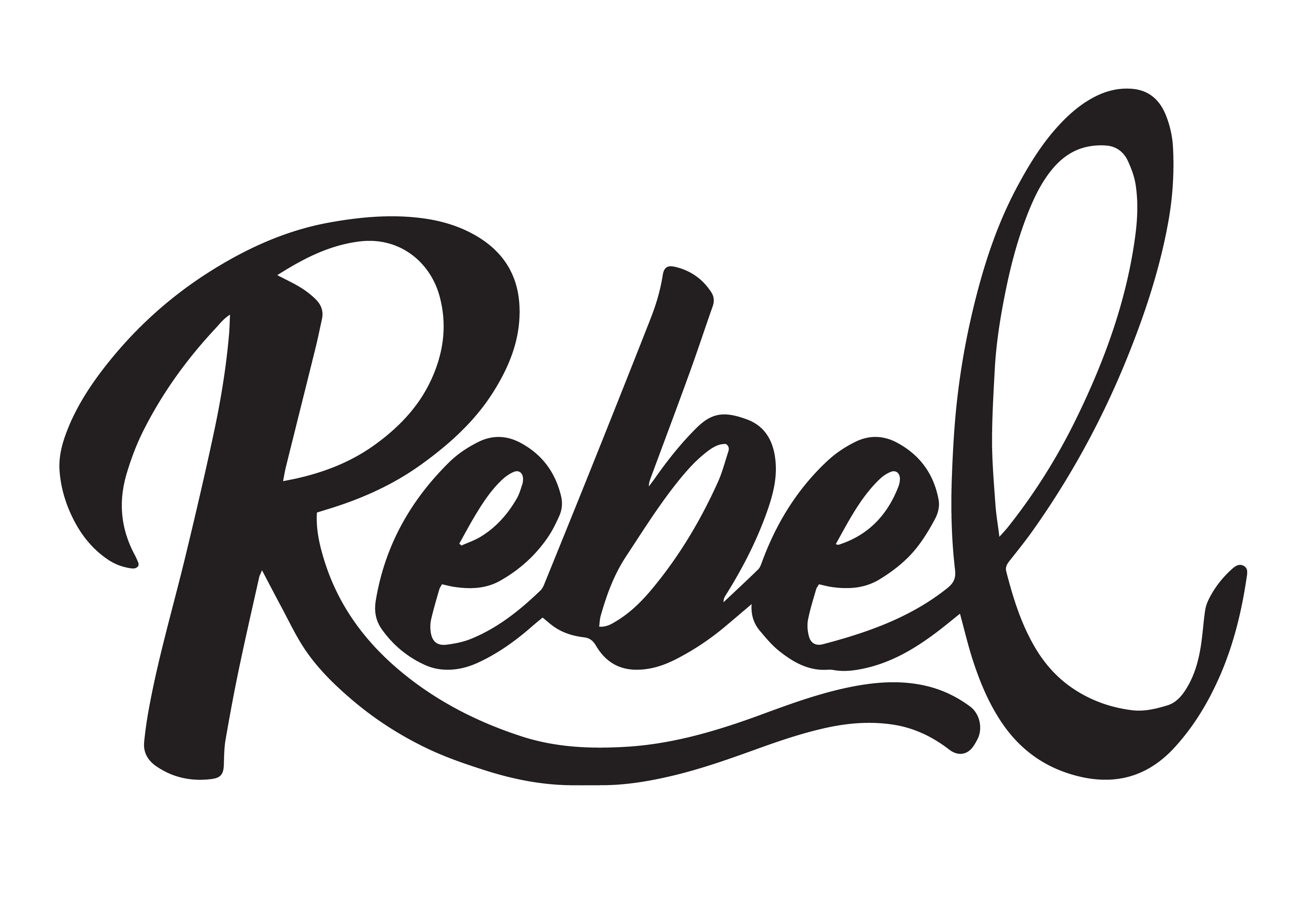 Rebel Ice Cream
