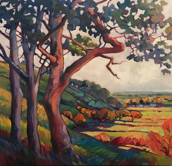 Evening Oaks - Giclee Reproduction
