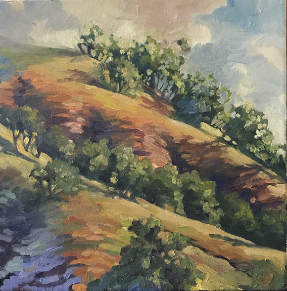 California Hills - Reproduction
