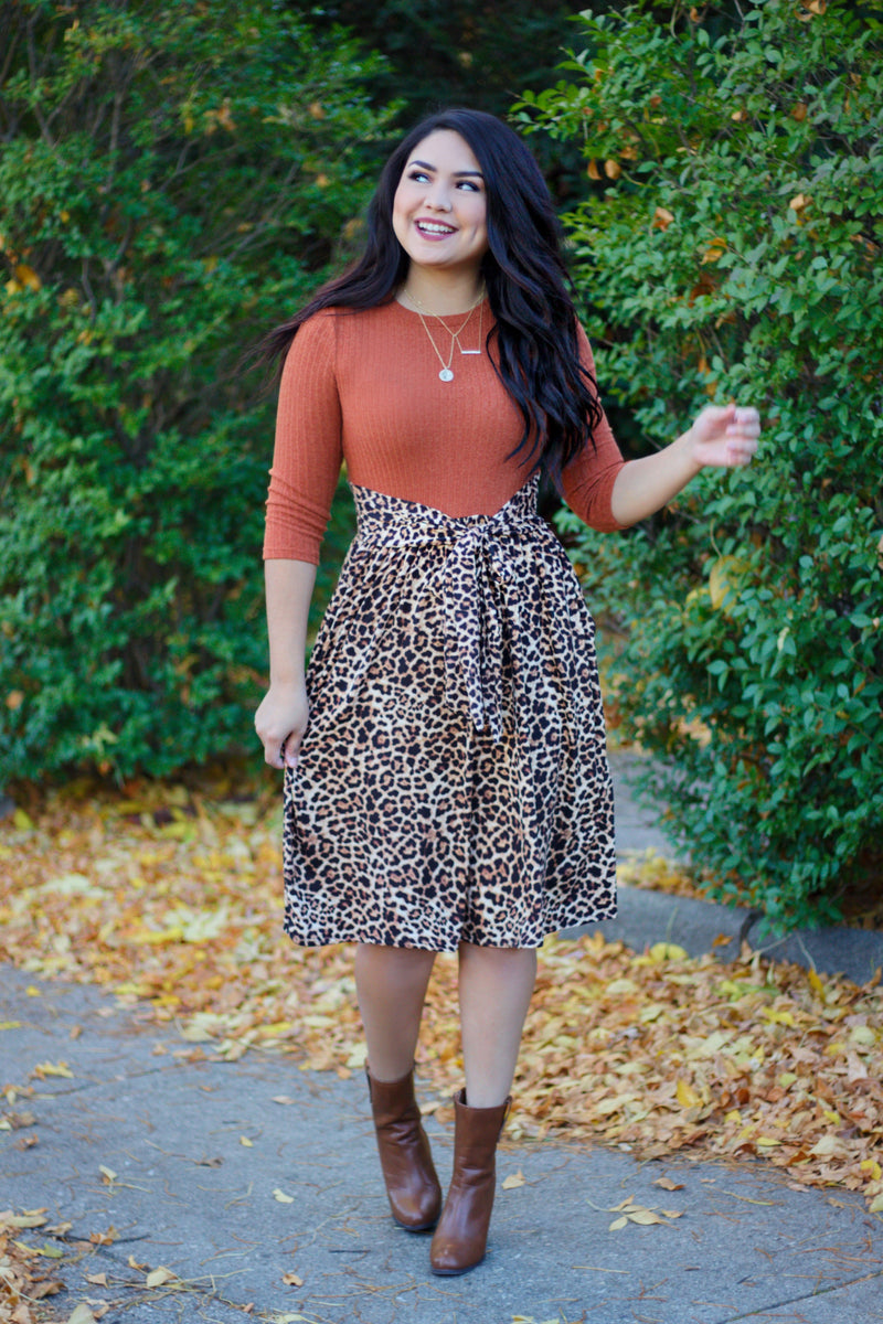 (Pre-Order) The Autumn Leopard Dress (Ships 10/30/20)