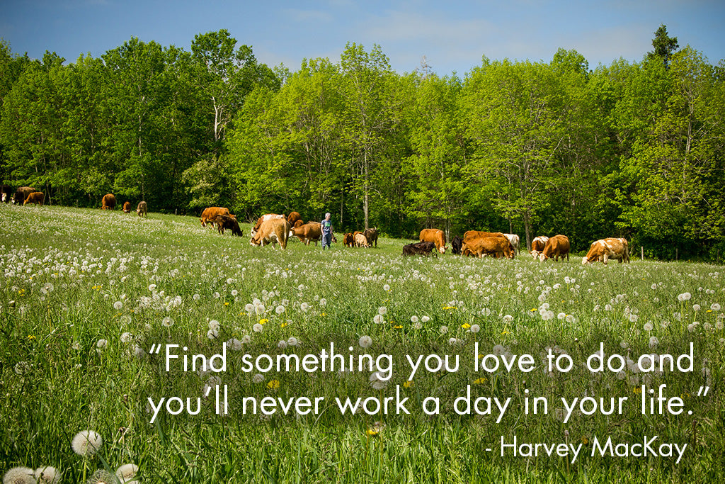 """Find something you love to do and you'll never work a day in your life."" - Harvey MacKay"
